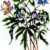 Ветреничка дубравная — Anemonoides nemorosa