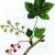 Смородина колосистая — Ribes spicatum