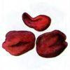 Блюдцевик розово-красный — Discina ancilis